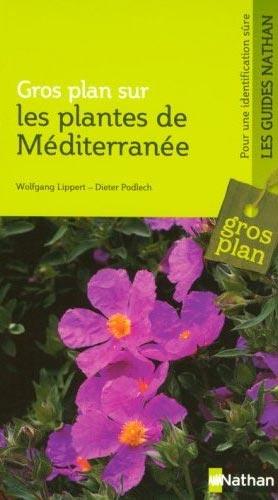 Les plantes de Mιditerranιe