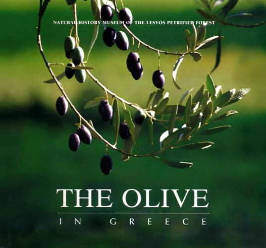 Talianis, The olive in Greece